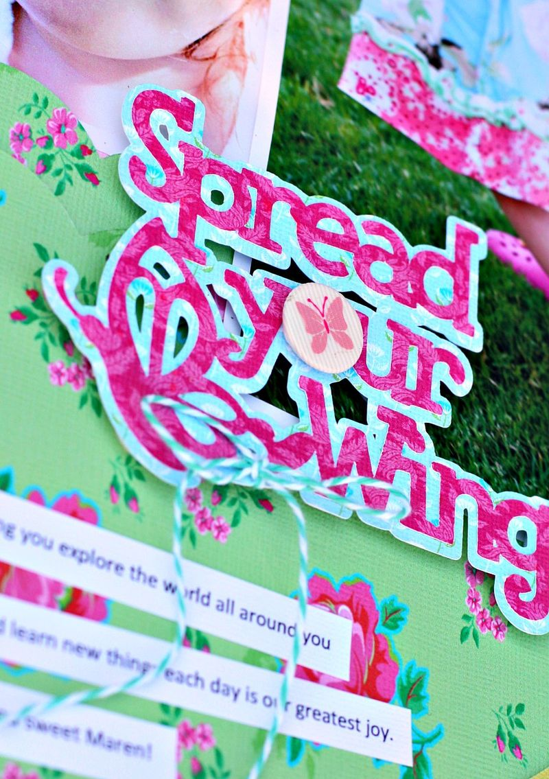 Spread your Wings closeup 1